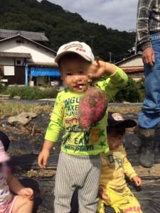 お芋掘り1