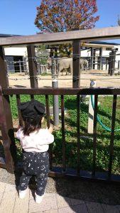 kyoto_zoo1