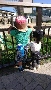 kyoto_zoo2